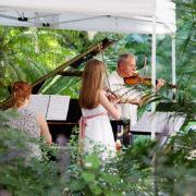 Zakhar Bron School Garlitsky Violin Masterclass 2018 8